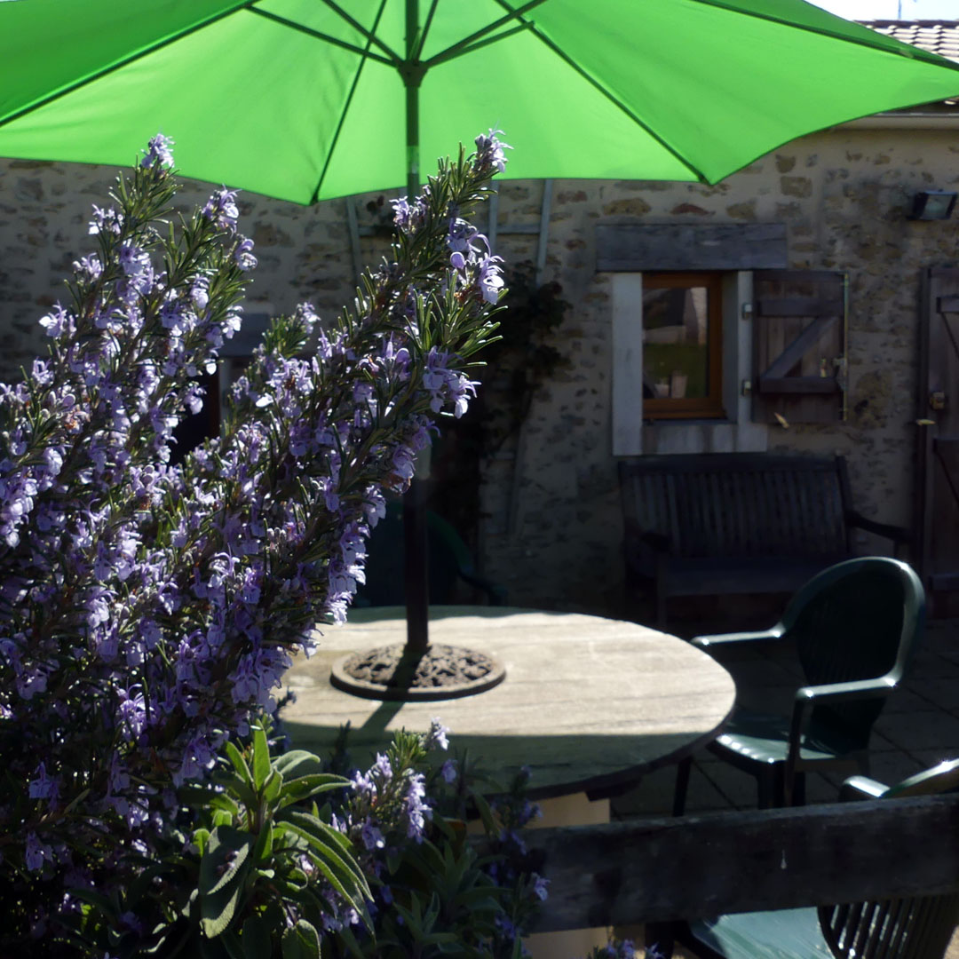 Patio Terrace at Wisteria Cottage